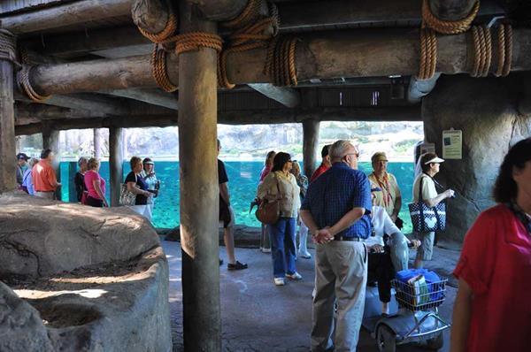 2014-02-04 Busch Gardens