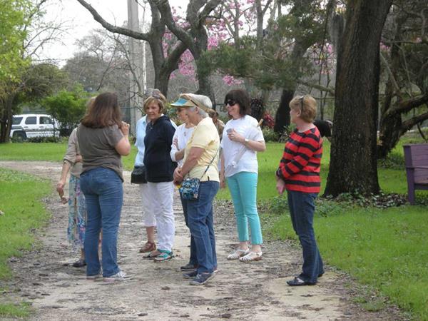 2014-02-26 USF Botanical Gardens
