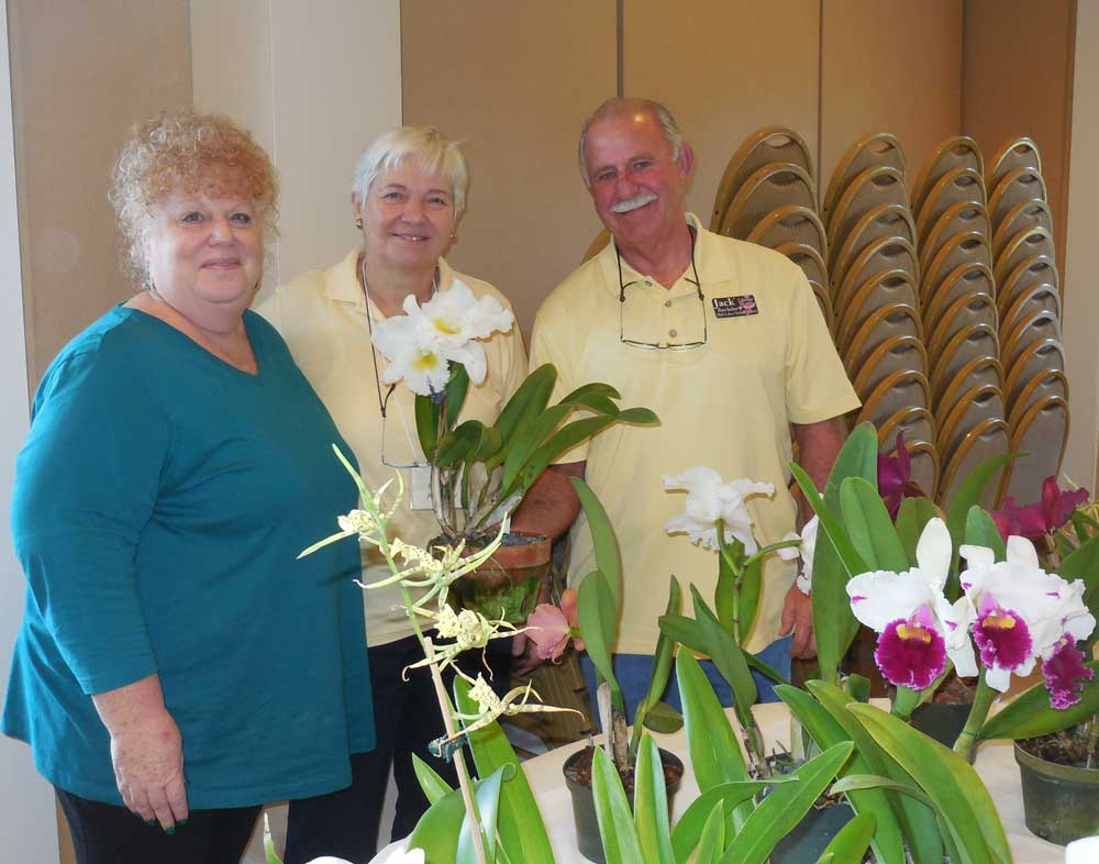 01-18-2017 How to care for Orchids