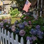 10-18-2017 Tour of Martha's Vineyard Oak Bluffs