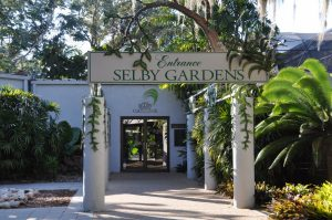 Trip to Marie Selby Botanical Gardens @ Marie Selby Botanical Gardens | Sarasota | Florida | United States