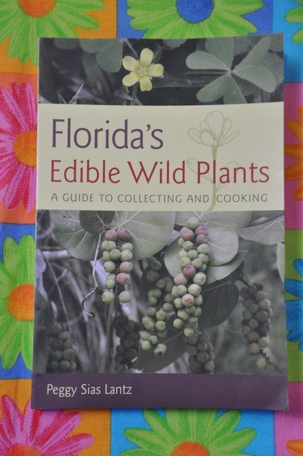 10-17-2018 Herbs from Florida Leanne Hill