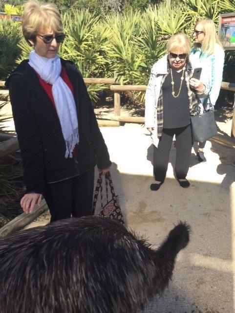 01-21-2019 Brevard Zoo