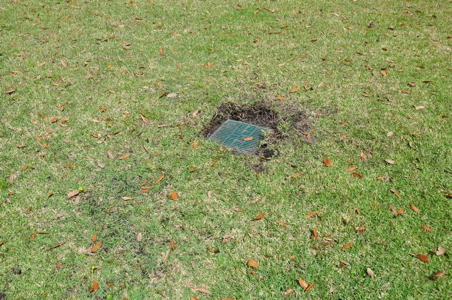 2019-03-09 Memorial Garden drains