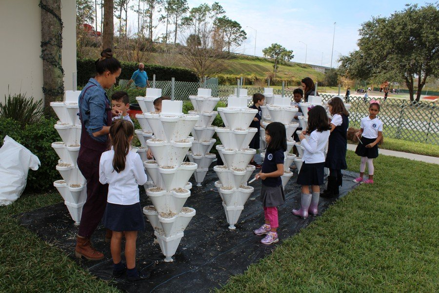 2019-01-02 Hydroponics at Creation School